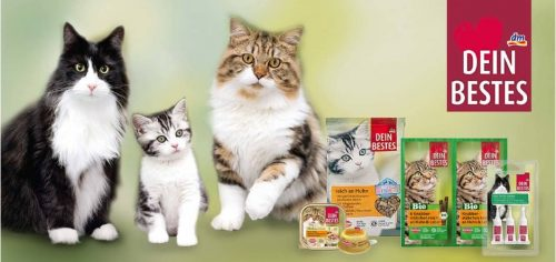 dm News: Dein Bestes Neuheiten für Katzen