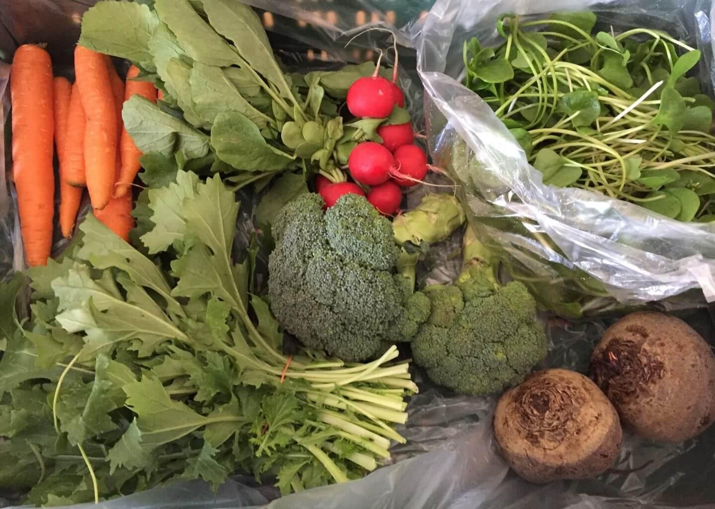 Inhalt Gemüsekiste KW13