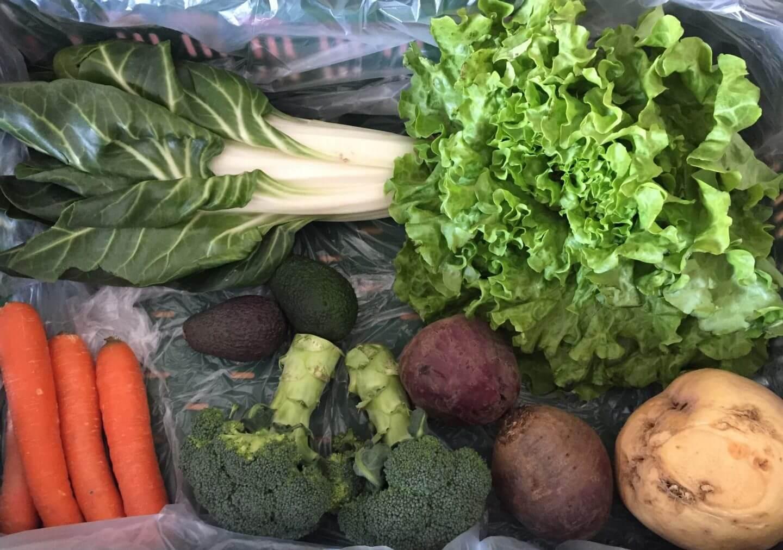 Inhalt der Gemüsekiste