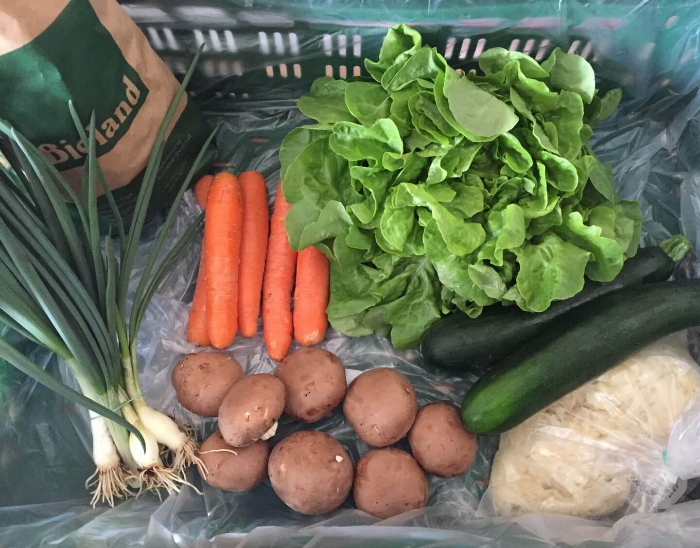 Inhalt Gemüsekiste KW14