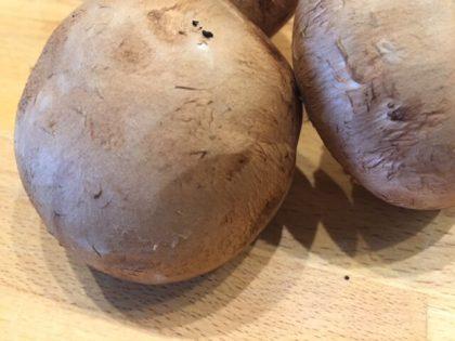 braune Champignons (1)