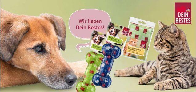 dm News: Dein Bestes Spielzeug für Hund und Katz