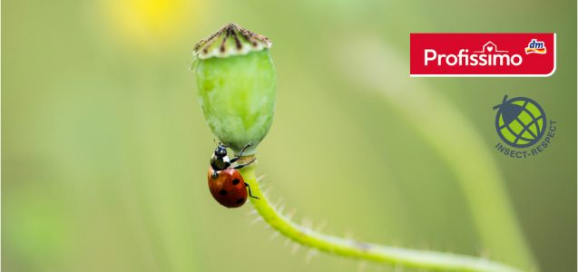 dm News: Profissimo – Insect Respect – Insektenschutz mal anders