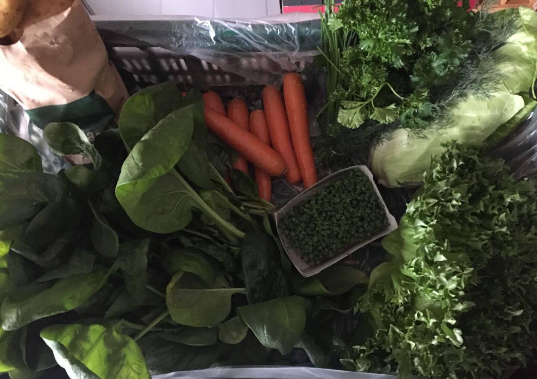 Inhalt der Gemüsekiste KW 18