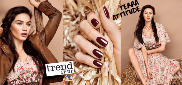 dm News: trend IT UP Limited Edition Terra Attitude