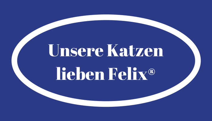 Felix Katzenfutter im Test