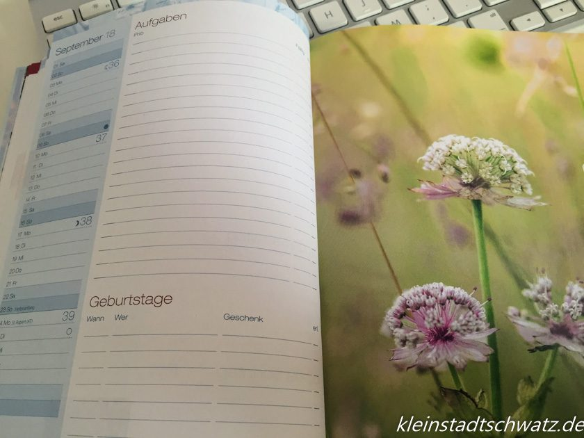 Chäff - Timer Monatsanfang