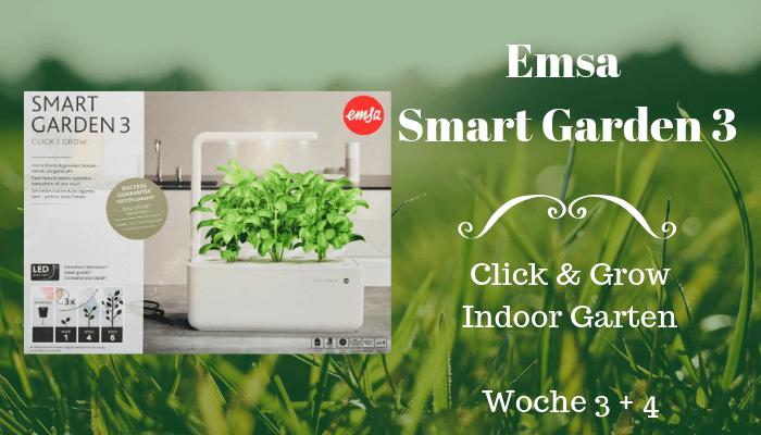 Beitragsbild Emsa Smart Garden Woche 3 und 4